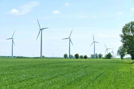 Lichtblick: Oft weniger Ökostrom im Energiemix als angegeben